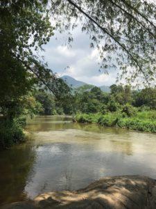 Yeşilin Ülkesi Sri Lanka'ya Yolculuk
