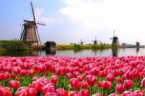 Hollanda'da Ulaşım - Ekonomik Seyahat İpuçları