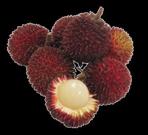 Pulasan - Egzotik Meyve