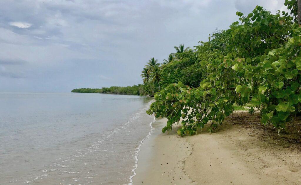 Dominik Cumhuriyeti Yaşam Rehberi - Bir Türk'ün Gözünden Dominik Cumhuriyeti'nde Yaşamak