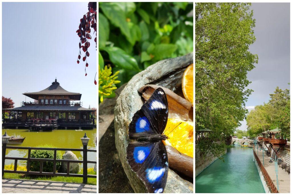 Kyoto Parkı/Kelebek Bahçesi/Meram Bağları - 2 Günde Konya'da Gezilecek Yerler