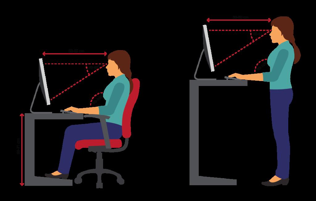 Ofiste / Evde Çalışma Sağlığı - Çalışma Sağlığı Ergonomisi