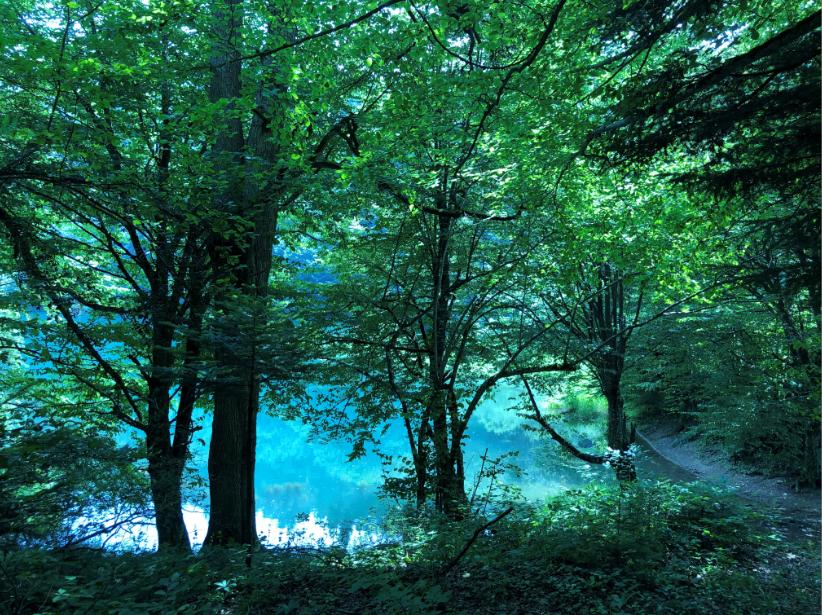 Sülüklü Göl Gezi Rehberi | Hafta Sonu Doğa Rotaları