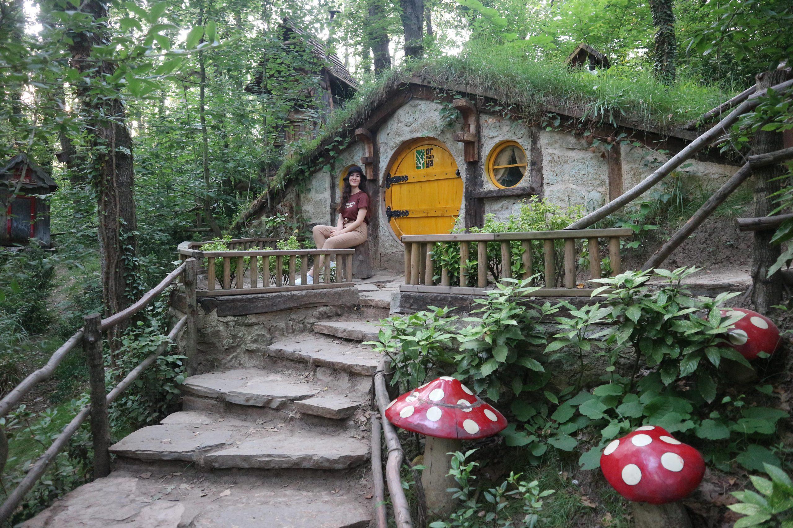 Ormanya Doğal Yaşam Parkı – Kocaeli Gezi Rehberi