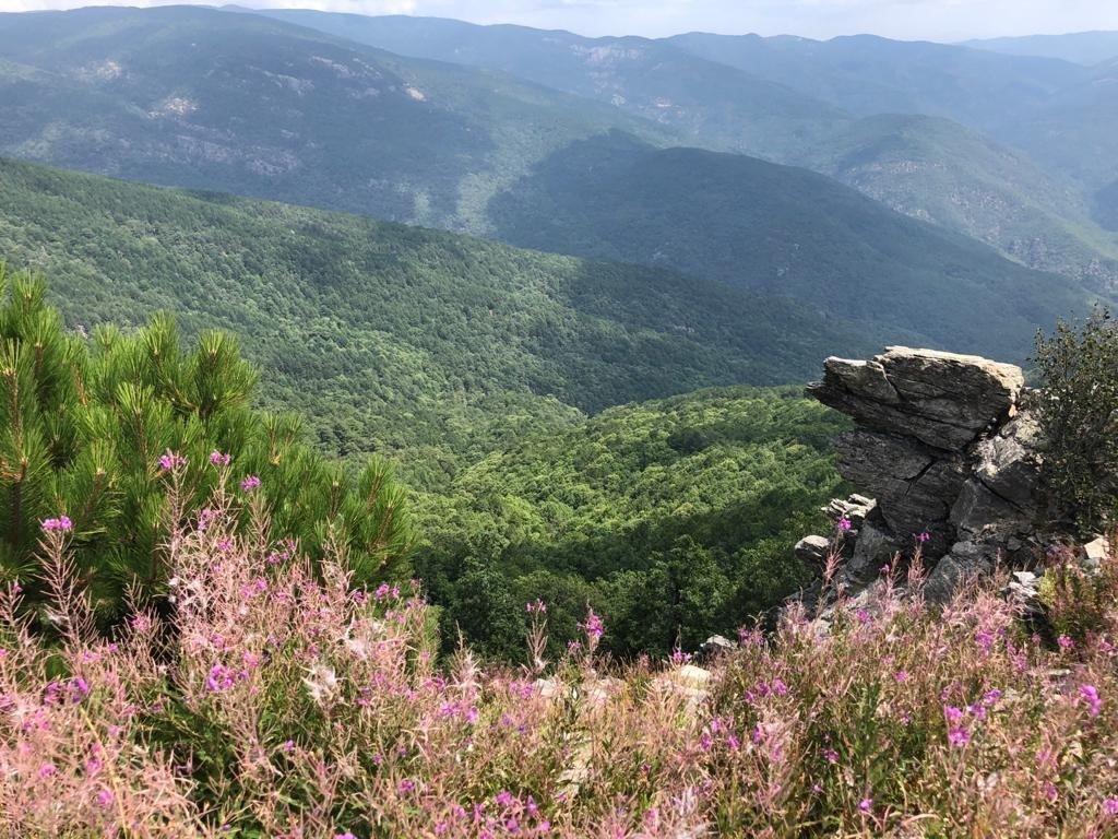 Kaz Dağları Milli Parkı - Kaz Dağları Gezi Rehberi