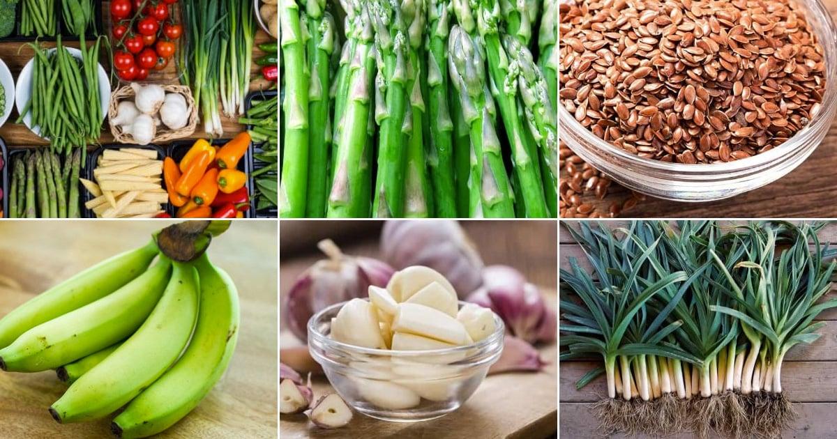 Prebiyotik - Fonksiyonel Gıdalar
