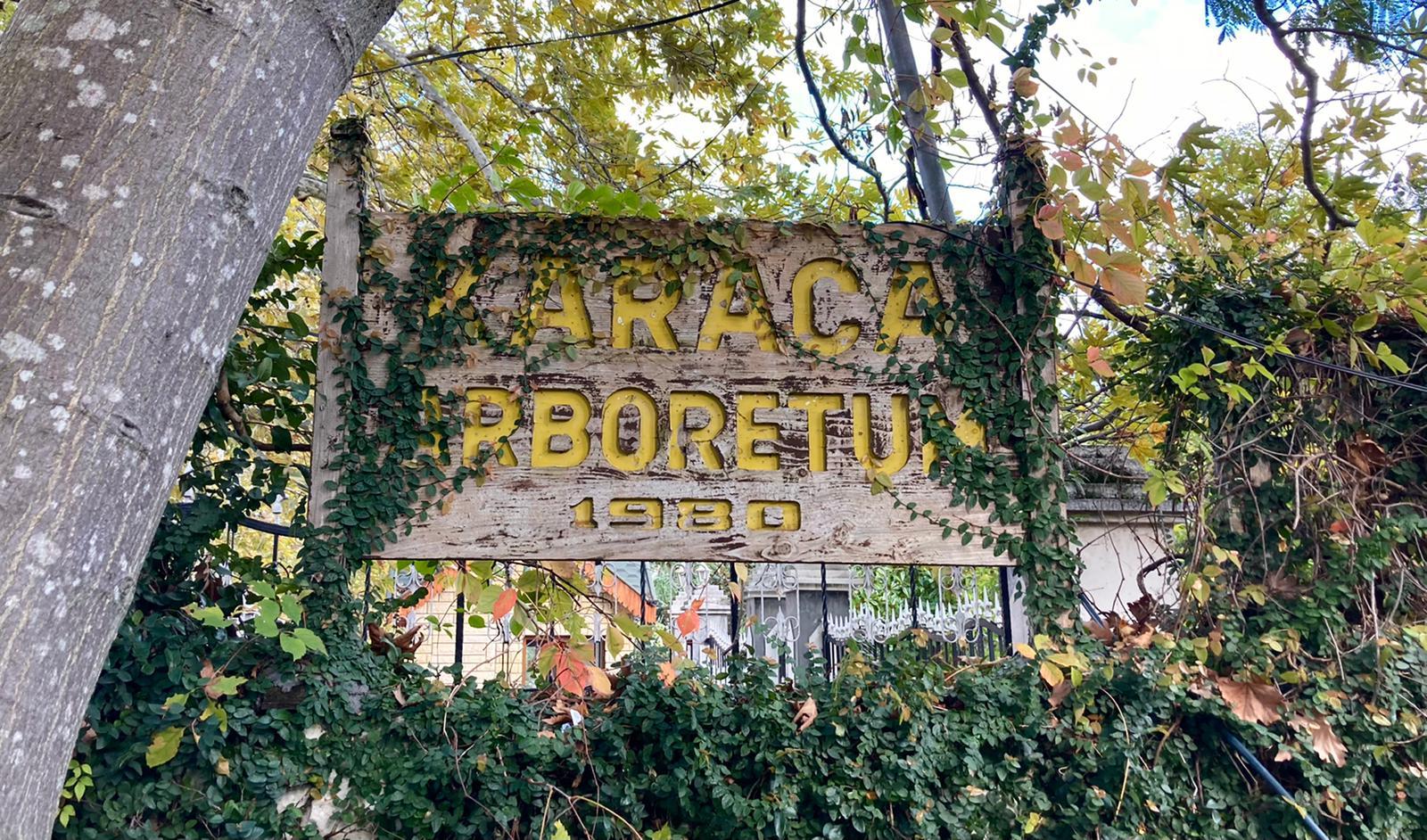 Karaca Arboretumu ve Sudüşen Şelalesi   Yalova Gezi Rehberi