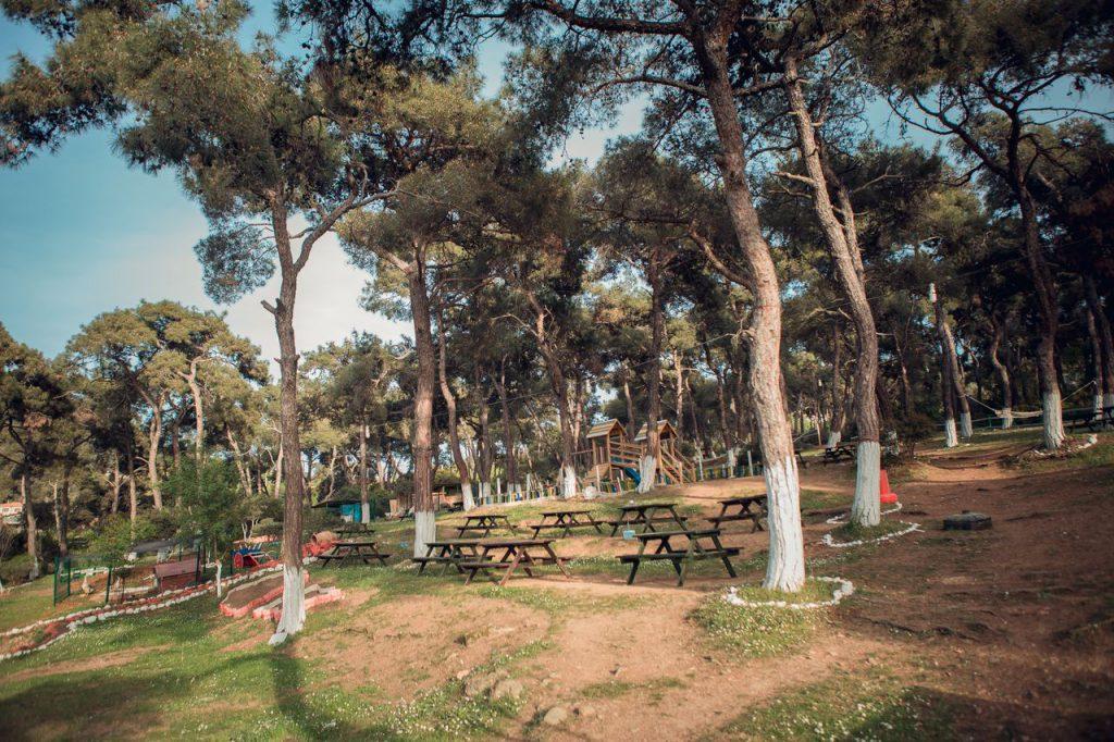 İstanbul Tabiat Parkları