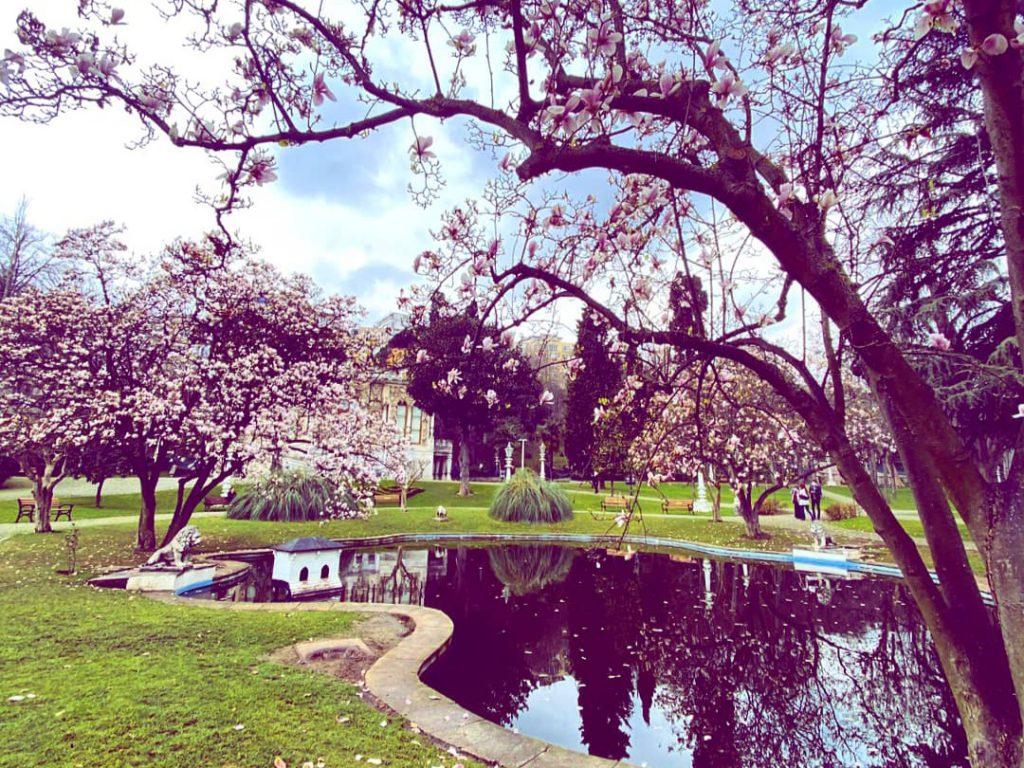 İstanbul'da Bahçeleriyle Ünlü Milli Saraylar   6 İstanbul Sarayı