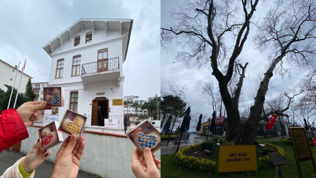 Zonguldak Gezilecek Yerler | Zonguldak'ta Görülmesi Gereken 60 Yer